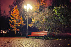 The autumn night in the park Royalty Free Stock Image