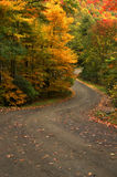 Autumn North Carolina High Country Road. Beautiful autumn gravel road vertical with S curve and copy space taken in the North Carolina mountains Stock Image