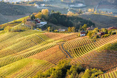 Autumn in northern italy region called langhe with colorful wine stock photo