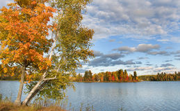 Autumn in the Northwoods Royalty Free Stock Photo