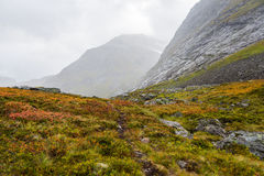Autumn in Norway Royalty Free Stock Images