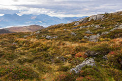 Autumn in Norway Stock Images