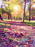 Autumn nostalgic park path Stock Photos