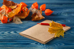 Autumn notes on blue table Stock Photography