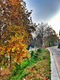Autumn. In Novi Pazar, Srbija royalty free stock image