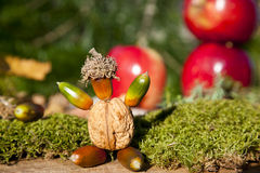 Autumn nuts decoration Royalty Free Stock Photography