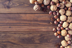 Autumn nuts Royalty Free Stock Photography