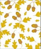 Autumn oak illustration. Vector pattern vector illustration