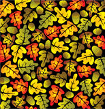 Autumn oak leaves. Vivid autumn oak leaves background stock illustration