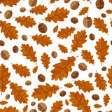 Autumn oak leaves. Seamless background Stock Photography