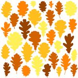 Autumn oak leaves set on white background vector.  royalty free illustration