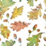 Autumn Oak-patroon in groen royalty-vrije illustratie
