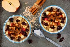 Autumn oats with apples and cranberries on vintage metal background Royalty Free Stock Photo