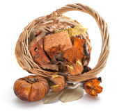 Autumn objects. Thanksgiving day card with pumpkin Royalty Free Stock Photography