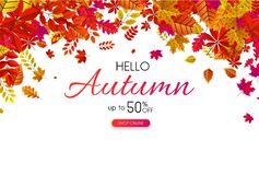 Autumn 50% off sale. Promo poster with orange leaves. Autumn up to 50 off sale. Promo poster with orange leaves. Online store. Vector background stock illustration