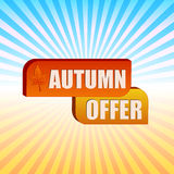 Autumn offer and fall leaf over rays Stock Photos