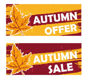 Autumn offer and sale drawn banners with fall leaf Stock Photos