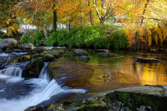 Autumn at Ogwen Bank Royalty Free Stock Photo