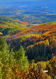 Autumn in Ohio pass, Colorado Royalty Free Stock Photography