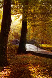 Autumn - Old bridge in autumn park Royalty Free Stock Images