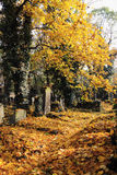 Autumn from the old Prague Cemetery Stock Photo