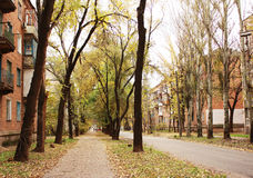 Autumn in the old town district. Of Eastern Europe, tall trees, house of the last century Stock Photography