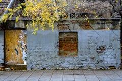 Free Autumn Old Wall Stock Photos - 131086913