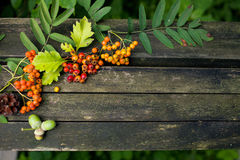 Autumn old wooden background with natural elements: Royalty Free Stock Image