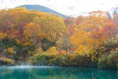 Autumn Onsen Lake Aomori Japan Royaltyfria Foton