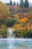 Autumn Onsen Lake Aomori Japan Arkivfoto