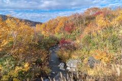 Autumn Onsen Lake Aomori Japan Stock Image