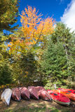 Autumn in Ontario stock images