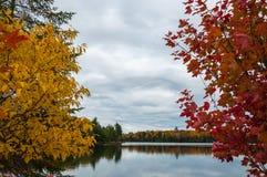 Autumn in Ontario Royalty Free Stock Image