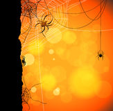 Autumn orange background with spiders and web Royalty Free Stock Images