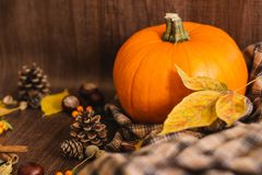 Autumn orange pumpkin and leaves. Autumn orange pumpkin and yellow leaves, plaid on the wooden brown background stock photos