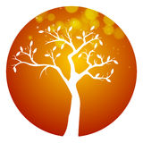 Autumn orange round tree icon Royalty Free Stock Photos