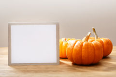 Autumn orange small pumpkins with message card royalty free stock photo