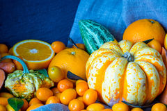 Autumn Orange Vegetables and Fruits, Beautiful Nature Background, Toned Picture Royalty Free Stock Image