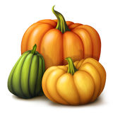 Autumn orange yellow and green pumpkins, seasonal illustration isolated on white background Stock Images