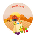 Autumn organic clean food. Farmer, farmland. Agriculture, farming. Rural landscape. Royalty Free Stock Images