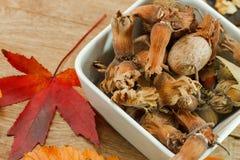 Autumn organic fruits - vegetarian food Stock Images
