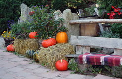 Autumn on the ornamental garden terrace Stock Images