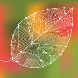 Autumn ornamental leaf Royalty Free Stock Image