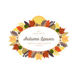 Autumn Ornaments - Leaves and Harvest Moon (2) Royalty Free Stock Photography