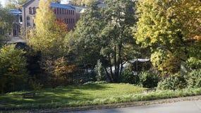 Autumn in Oslo. Autumn at Akerselva, the river that runs through Oslo royalty free stock photos