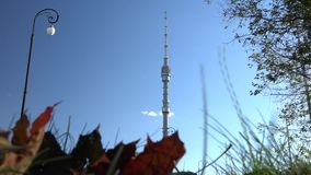 Autumn. Ostankino TV Tower. stock video