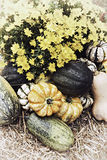 Autumn Outdoor Decor - nostalgic 4. Autumn decor. Pumpkins, squash, gourds, chrysanthemums, and hay arranged in a fall outdoor display. Bleached nostalgic royalty free stock photography