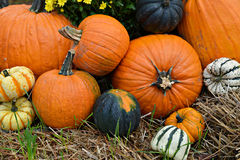 Autumn Outdoor Decor - vibrant 4. Autumn decor. Pumpkins, squash, gourds, chrysanthemums, and hay arranged in a fall outdoor display royalty free stock photos