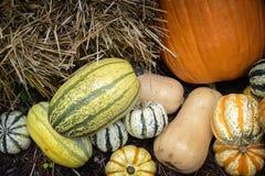 Autumn Outdoor Decor - vibrant 5. Autumn decor. Pumpkins, squash, gourds, and hay arranged in a pleasing fall outdoor display stock photos