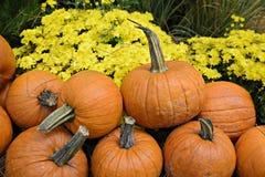 Autumn Outdoor Decor - 2 vibrantes Foto de Stock